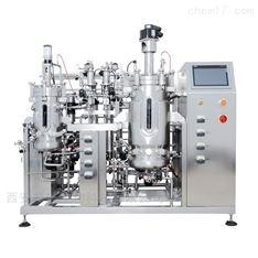 搏旅发酵罐 双联不锈钢微生物发酵系统