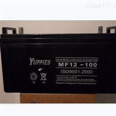 YUPPIES蓄电池MF12-65批发12V65Ah代理商