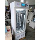 MJX-100霉菌培养箱*