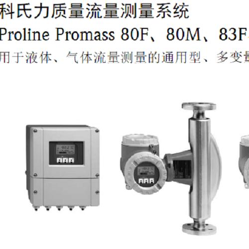 Proline Promass X 300 质量流量计