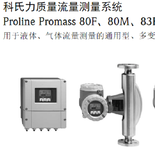 Proline Promass X 500 质量流量计