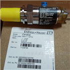 促销E+H恩德斯豪斯CPS11D电极