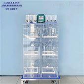 DYL006垃圾发酵实验箱/固废处理