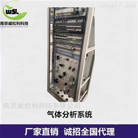 CEMS成套系统中烟气分析仪