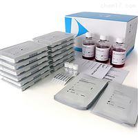 N9302941美国PE耗材试剂中国区代理商