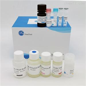 Human FGF7 ELISA试剂盒