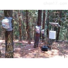 四针茎流(液流)测量系统