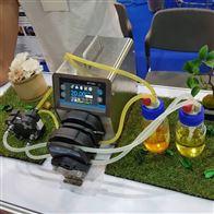 定时分装蠕动泵 BT300L实验室恒流泵