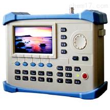彩色图像监视数字场强仪