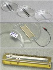 BTX 电融合电极