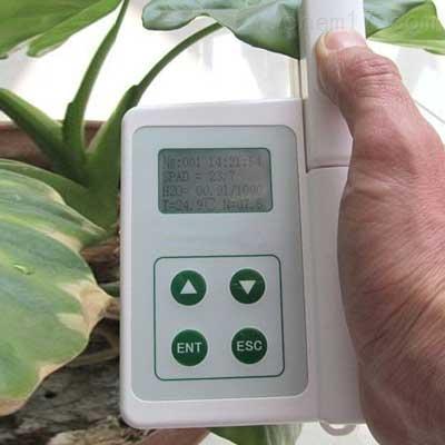 植物叶片温度测量仪
