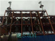 2万吨橡胶防老剂TMQ扩建项目精馏塔塔内件
