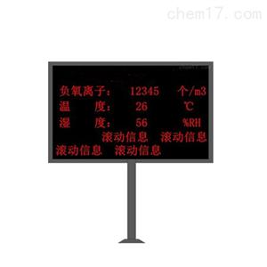 负氧离子监测仪HCZ-FY72