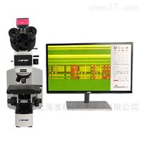 CX40MRT偏光显微镜