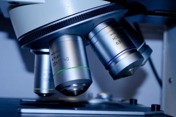 预算815万 青岛大学采购质谱成像仪等大型仪器设备