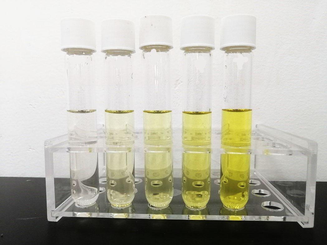 水质中硼含量的测定-gdfbfgbg.jpg